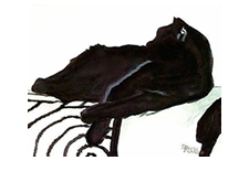 black_cat_watercolor_ii