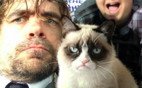 dinklage_grumpy_cat
