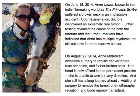 Anne Lower Medical Fund