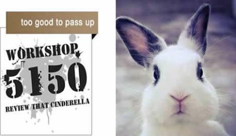 5150_bunny
