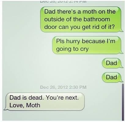 dad_moth